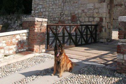 Wermut po zdobyciu Castello di Brescia