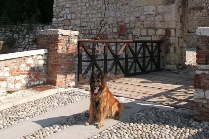 Wermut pozdobyciu Castello di Brescia