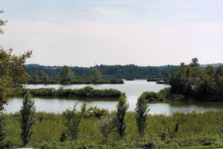 Torbiere del Sebino - rezerwat naturalny